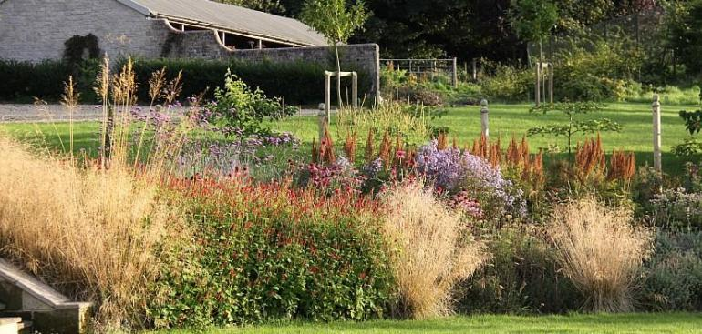 Perennials punctuated by golden grasses
