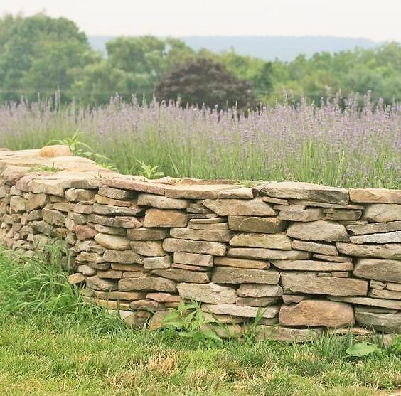 Poole garden stone wall